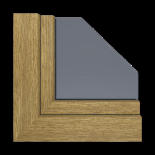 Kolory okien Aluplast Turner Oak Malt AP19