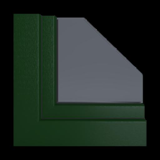 Kolory okien Salamander Ciemnozielony 03