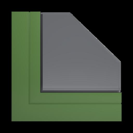Kolory okien Aluplast RAL 6025 zieleń paproci